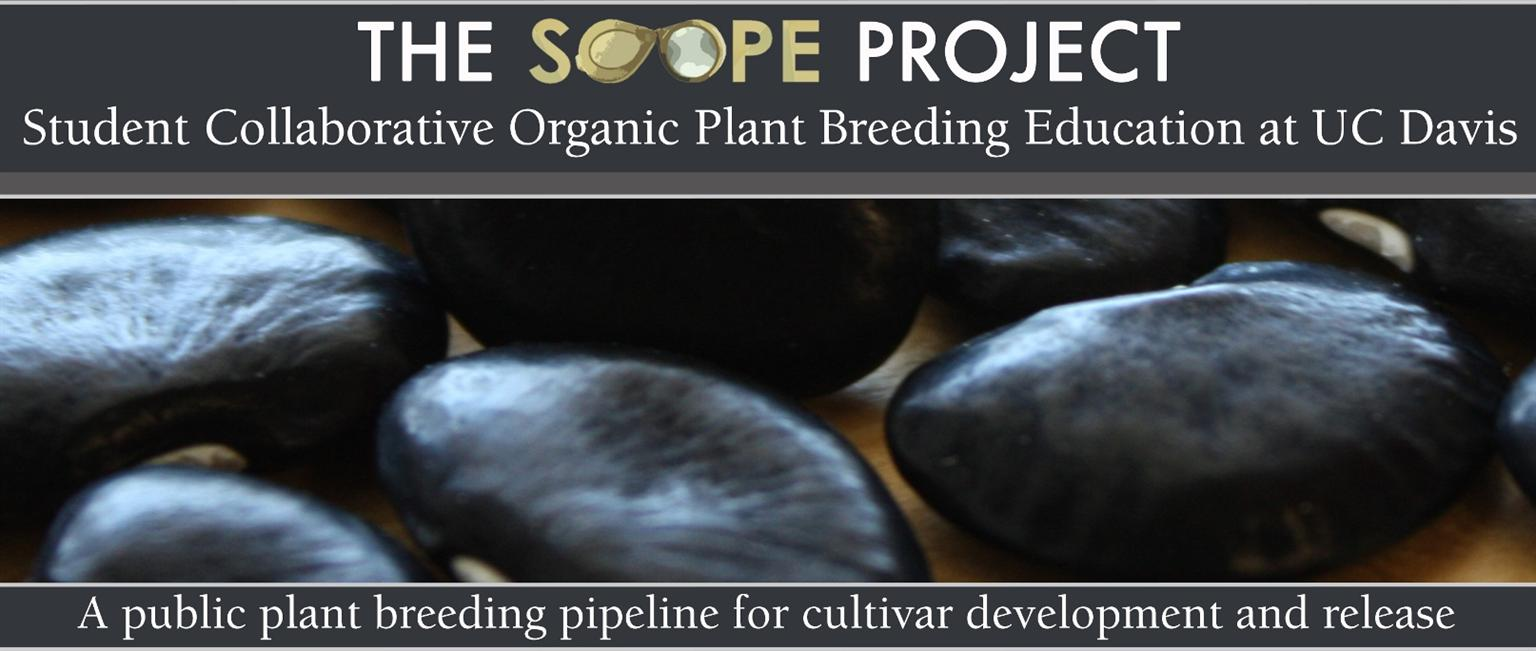 SCOPE Seminar, Fred Hempel, Artisan Seeds