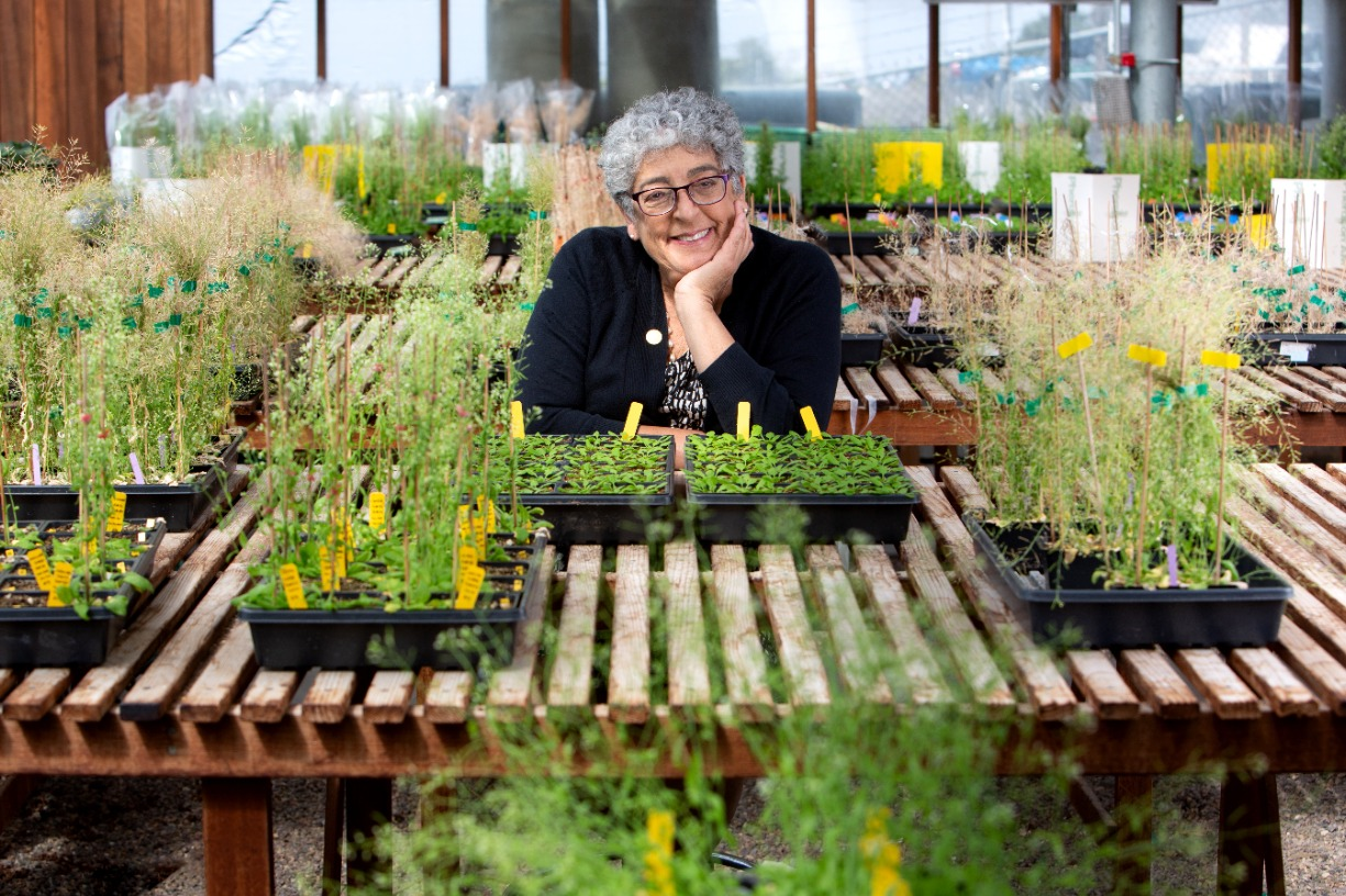 """""""Fighting Climate Change with Plants: It Takes a Global Village to Fight a Global Problem"""""""
