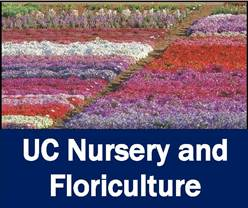 CANCELED - Plant Nutrition and Fertilizer Management in Nursery Operations (English and Spanish sessions)