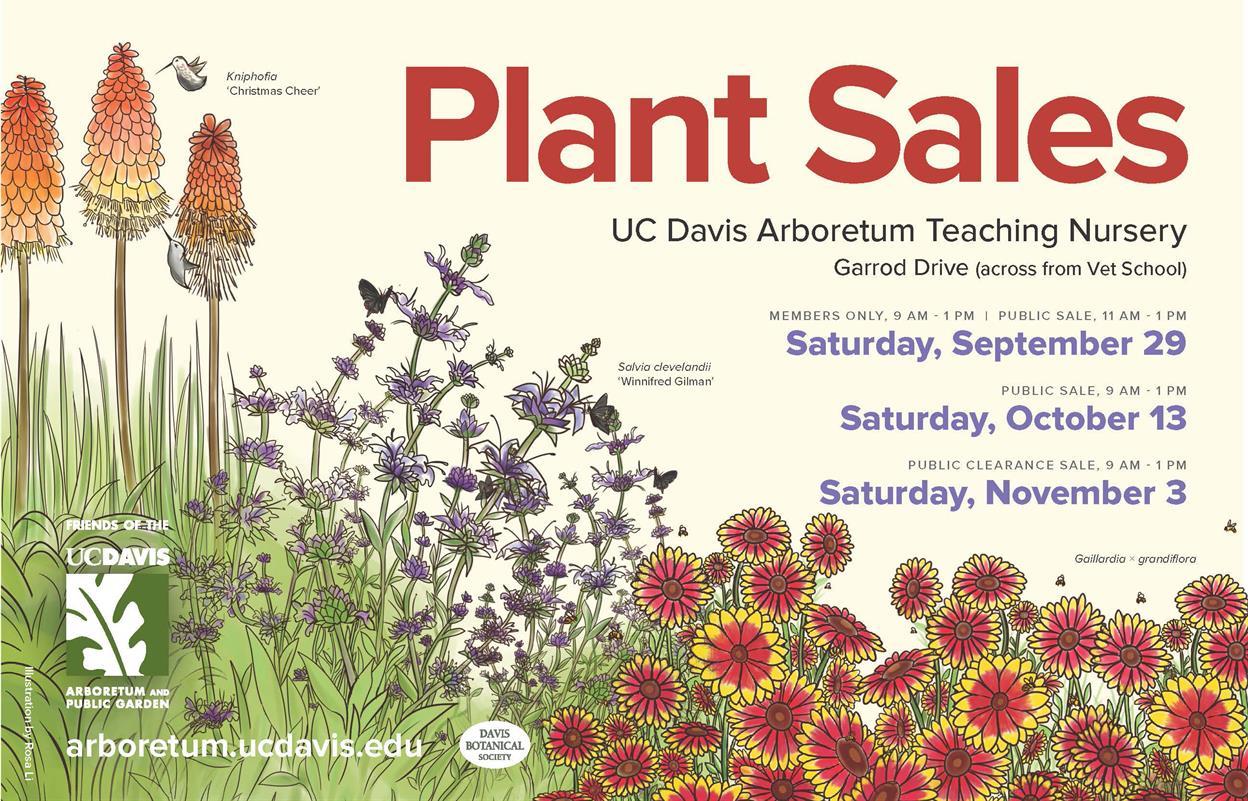 Arboretum Plant Clearance Sale