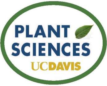 """New Insights in the Growth-Defense Tradeoffs in Plants"" (Paula Rodriguez Oblessuc)"
