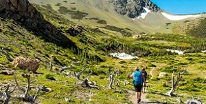 REMOTE - Physical Activity Challenge: National Parks of America