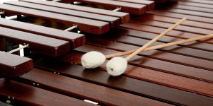 """""""Drumming"""""""