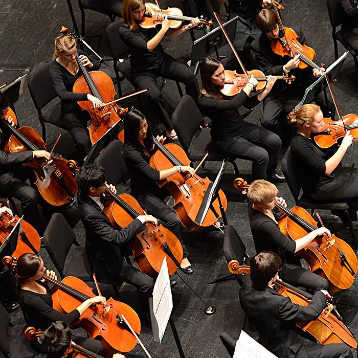 UC Davis Symphony Orchestra: Picnic Day