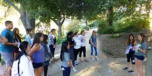 Meet the Arboretum Tour
