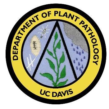 """Safeguarding Driscoll's Plant Health"" (Thien Ho)"
