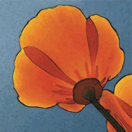 """How I Spent My Field Season"" (Student grant recipients, Davis Botanical Society)"
